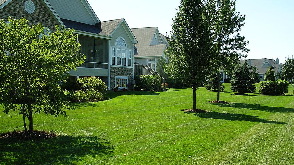 Landscape Design Installation Maintenance Evergreen Landscape