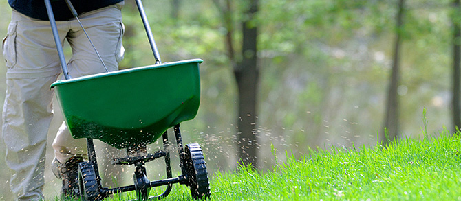 Learn more about Turf Care Services