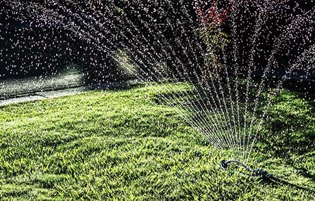 Best time of day to water your lawn