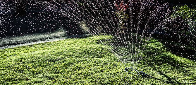When to water your lawn