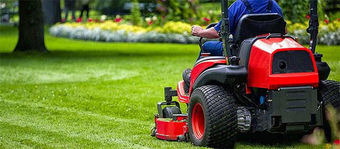 Learn more about Landscape Maintenance