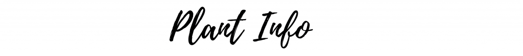 Plant Info Header